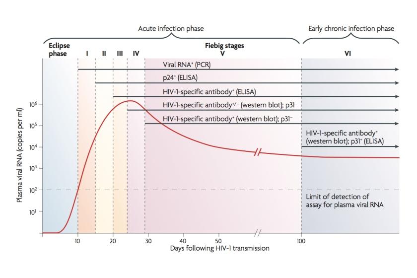 Testes de HIV e janela imunológica