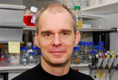 O pesquisador irá descrever a origem e a evolução do HIV-1 grupo M e discutir propriedades específicas desse vírus que contribuem para a sua alta virulência e expressiva propagação (foto: DFG)